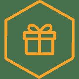 icons_hexagon3_present-orange.png