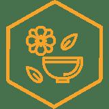 icons_hexagon_wellness-orange.png